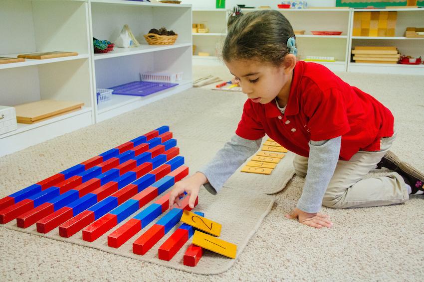 Montessori Tampa Curriculum