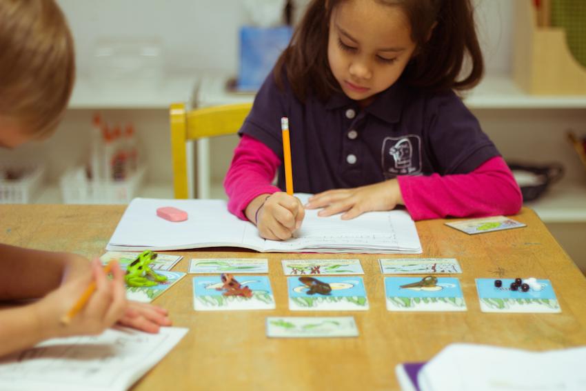 Montessori Tampa Science